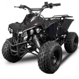 Warrior RG8 125cc