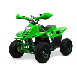 "Bigfoot 6"" 800W Electrique"