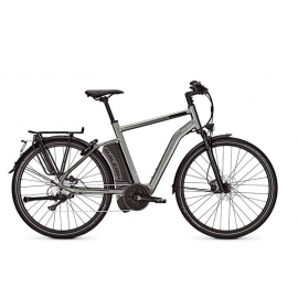 Raleigh Stoker Homme 350 W
