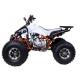 Quad Cheetah 125cc
