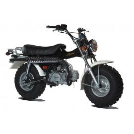 T-REX 50cc Moto Homologable