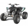 Quad 300 homologue madmax raptor