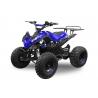 Speedy 8' Electrique 1000W 48V